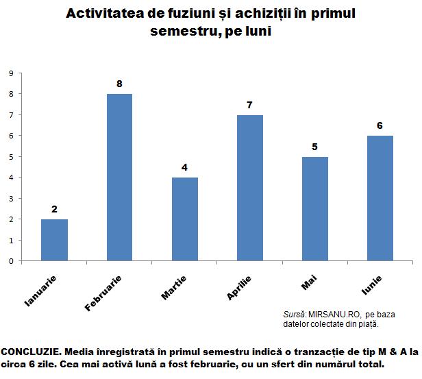 Analiza s 1 grafic tranzactii activitate pe luni